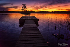 """Sunset at the """"tiny"""" pier (Usstan) Tags: nikon sunset sigma reflection reflections enebakk norway shadows tree ytreenebakk autumn d750 2470mm lens pier outdoor lake evening dusk clear locations seasons landscape calm norge serene akershus sky sun water colors clouds waves no"""