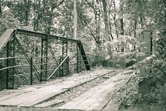 Along a Country Road. Off Prompt. (Angela.Dee) Tags: bridge ironbridge bw blackandwhite dof trees canon 6d 24105mml cy365 quincy il quincyil adamscounty