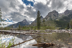 Jenny Lake Trail (gunigantip) Tags: alta wyoming unitedstates us gtnp grandtetonnationalpark grandtetons tetons nationalpark stringlake jennylake trail