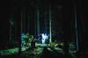 Ghost Forest (Niks Freimanis) Tags: ghost ghosts forest spoki spoks night fright woods mezs low light flashlight portrait white trees green latvia latvija baltic canon 6d 1740 l f4 tripod