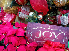 """Christmas """"JOY To The World"""" message (Victor Wong (sfe-co2)) Tags: christmas decoration tinsel closeup celebration ornament shiny xmas red gold white glitter december color golden traditional festive decor green tree fir silver object ribbon hanging card macro symbol bulb ornate pine message board warm text signboard sign signage joy world"""