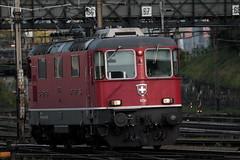 SBB Lokomotive Re 4/4 II 11136 ( Hersteller SLM Nr. 4668 - BBC MFO SAAS - Baujahr 1967 mit Scherenstromabnehmer ) am Bahnhof Basel SBB im Kanton   Basel Stadt der Schweiz (chrchr_75) Tags: albumzzz201610oktober christoph hurni chriguhurni chrchr75 chriguhurnibluemailch oktober 2016 hurni161018 bahn eisenbahn schweizer bahnen zug train treno albumbahnenderschweiz2016712 albumbahnenderschweiz schweiz suisse switzerland svizzera suissa swiss albumsbbre44iiiii lok lokomotive sbb cff ffs schweizerische bundesbahn bundesbahnen re44 re 44