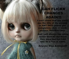 Why Does Flickr have to Change? (Lawdeda ) Tags: stupid changes that make me annoyed gah doll ixnay grumpycat grumpy cat blythe picmonkey