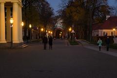 2016_1019F-0040 (Andrey.Illarionov) Tags: petersburg            europe russia saintpetersburg peterandpaulfortress evening lights autumn walk sunset people streetphotography   temple church