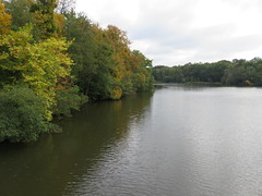 UK - Berkshire - Near Sunningdale - Windsor Great Park - Virginia Water (JulesFoto) Tags: uk england southbankramblers berkshire sunningdale virginiawater autumncolour windsorgreatpark