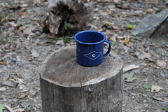Coeymans Hollow, NY (Alaina H.) Tags: camping tipi upstatenewyork coffee breakfast camp