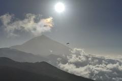 Teide, Tenerife (carlos muoz garcia) Tags: tenerife volcano parapente clouds landscape paisaje sky cielo