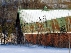 from this to that in less than half an hour (1) (Ange 29) Tags: trees sunlight snow canada barn king olympus om zuiko township omd f63 em1 400mm