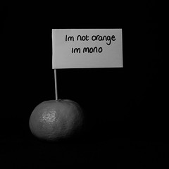Monorange (BenChapmanphoto) Tags: light blackandwhite bw orange white macro monochrome true sign fruit writing canon square mono funny text flash january sp af fullframe tamron 90mm speedlight 116 strobe 2015 strobist canon5dmkiii canon430exii 5dmkiii yongnuorf603c tamron90mmspafmacro