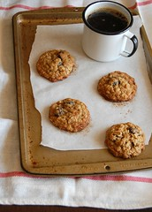 Cranberry oatmeal cookies with coconut / Cookies de aveia, coco e cranberry (Patricia Scarpin) Tags: cookies baking coconut oatmeal oats driedcranberries