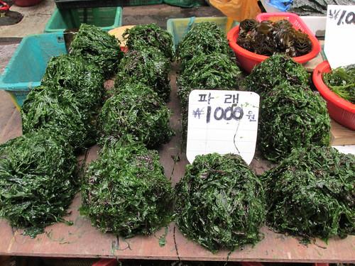 Algues, Jagalchi Market, Busan, Corée du Sud