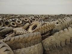 2014-11-06 12.45.31 (felipefonseca) Tags: trip junk tires fieldtrip lixo qatar craftsmen gambiarra vcuq repairmen mfavcuq