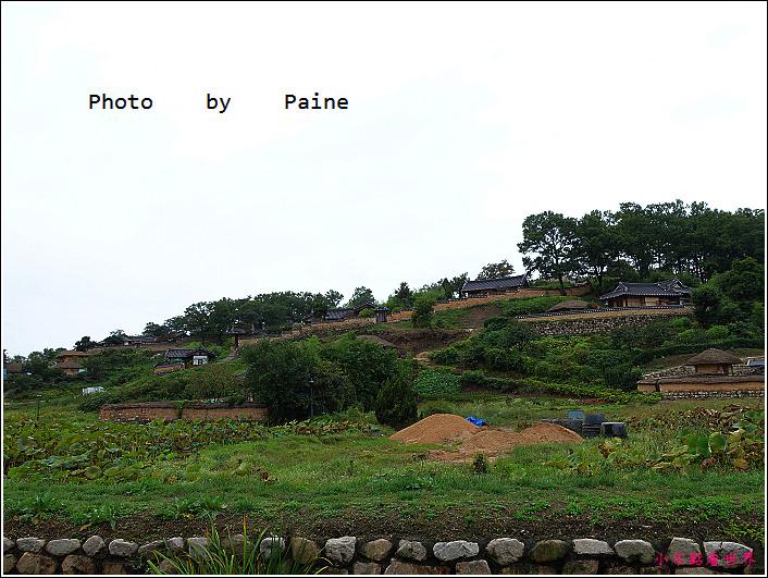 慶州良洞村 (16).JPG