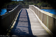 ~ Shadow Bay Park Pier ~ (iTail ~ Steve Page) Tags: nature water sunshine canon reflections eos pier dock shadows lakes stevepage centralflorida itail ef24105mmf40lisusm stephenpage canon7d shadowbaypark doctorphillips canon5dmarkiii efs55250mmf456isstm