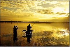 Vision... (rogilde - roberto la forgia) Tags: life lake fish silhouette relax lago gold soft tramonto peace pace pesca pusiano share pescatore essere oro pesce leggerezza galleggiare pescatori serenit goldenlake sospesi lagodipusiano condividere rogilde robertolaforgia
