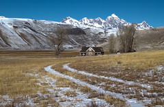 National Elk Refuge - Miller House (laura's Point of View) Tags: winter snow mountains nature butte jackson wyoming tetons jacksonhole grandtetonnationalpark twotrack openspaces millerhouse nationalelkrefuge millercabin lauraspointofview lauraspov