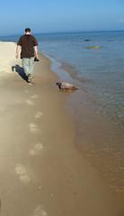 Caleb walk (enochhaven) Tags: bear camera sleeping man walking point sand pyramid dunes footprints photographs national lakeshore