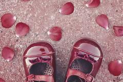 Zapatitos rojos (Ali Llop) Tags: red baby flower girl rose petals rojo shoes rosa ground zapatos niña suelo petalos cenital