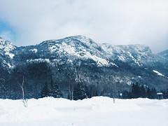 23. (ohlittlewolf) Tags: new winter white snow ski mountains sports washington mt skiing tea outdoor hiking trails whitemountains hampshire presidential adventure adventures blizzard range