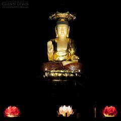 Glowing Buddha (glennlewisphotography) Tags: light flower statue night gold lights asia meditate glow lotus buddha buddhism korea southkorea jeju