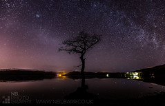 Milarrochy Bay by Starlight (GenerationX) Tags: tree water night reflections stars landscape bay scotland still unitedkingdom scottish neil calm single trossachs lochlomond barr milkyway starlight luss milarrochy