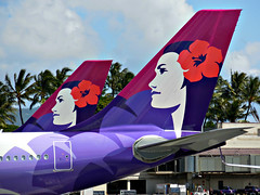 HA A330 tails /HNL (kenjet) Tags: flower colors logo airplane gate tail jet airbus hawaiian ha a330 tails airliner hnl honoluluinternationalairport hawaiianairlines phnl pualani a330243
