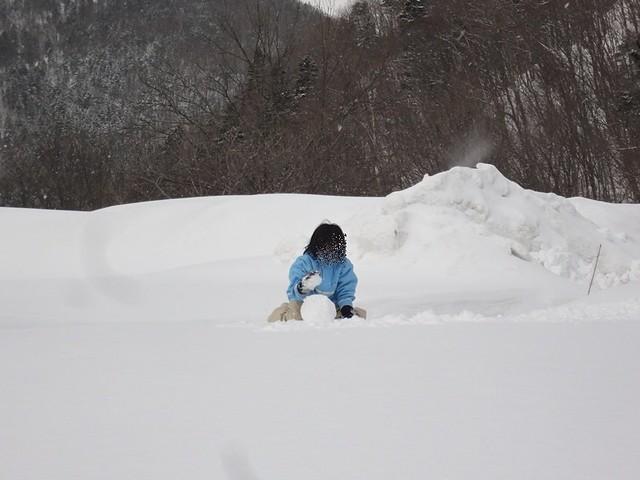 ふわふわの雪でもまた、雪だるまにするのは難しいようです。|豊平峡温泉