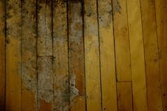 Lick the salt from my skin (jessrawk) Tags: wood winter brown stain floors grey rocks floor stones ottawa salt pebbles dirty crack dirt stains 365 cracks grime wintertime 55 gunk hardwood buildup saltlick fiftyfive
