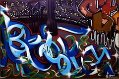 STREET-ART, FOIRE INTERNATIONALE DE CLERMONT-FERRAND (Gilles Poyet photographies) Tags: streetart soe auvergne clermontferrand autofocus aplusphoto cournondauvergne foireinternationale artofimages rememberthatmomentlevel1