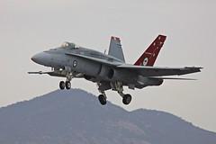 Hornet A21-35 (joolsgriff) Tags: hornet f18 raaf avalon fa18 mcdonnelldouglas a2135 australianinternationalairshow