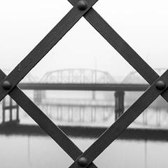 A look over the Brazos (ddmantx) Tags: bridge white black fog river blackwhite nikon downtown texas waco suspension tx sigma brazos brazosriver 1750mm d7100 sigma1750 nikond7100 wacodowntownfogbrazosriver