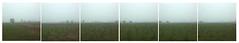 #7984 (UBU ♛) Tags: unamusicaintesta landscapeinblues bluubu luciombreepiccolicristalli ©ubu