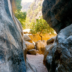 Torrent de Pareis (Hugh_C) Tags: color colour nature square landscape spain fig canyon gorge format mallorca torrentdepareis 160711dscf9966