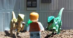 Rotten food (hachiroku24) Tags: lego jurassic world park raptor toy movie scene velociraptor training stage sun daylight colour