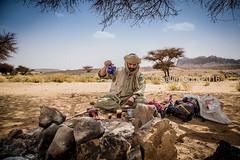 Under Acacia's shadow (Salim Gora) Tags: tuareg tee touareg targui hoggar ahaggar opna accacia algeria tamanrasset deserty sand fire camp salim gora algrie atakor assekrem ilaman tahat sahara outdoor desert