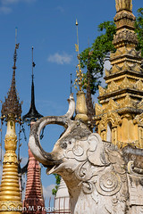 722-Mya-KAKKU-031.jpg (stefan m. prager) Tags: burma buddhism myanmar shan elefant birma elefanten sehenswrdigkeit kakku buddhismus dickhuter nikond810 pagodenfeldkakku
