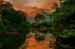 DSC_0169-2 (Tayyab Hashmi) Tags: pakistan sunset lake weather photography spring photowalk eveningwalk islamabad lakeviewpark rawallake aperture22 beautifulcapital islamabadbeauty