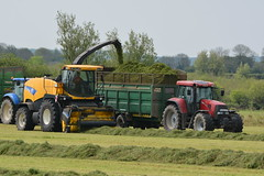 New Holland FR9080 SPFH filling a Thorpe Silage Trailer drawn by a Case IH CVX 160 Tractor (Shane Casey CK25) Tags: county new ireland winter red horse irish tractor holland field grass work pull hp nikon power cattle cows cut earth farm cork farming working machine ground case machinery soil crop thorpe cutting feed farmer trailer agriculture drawn silage pulling contractor filling ih horsepower fodder lifting youghal 160 cnh agri cvx spfh d7100 casenewholland grass16 fr9080 silage16 silage2016 grass2016
