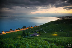 l'claircie (MB*photo) Tags: lman suisse coucherdesoleil lavaux soir wwwifmbch aran vaud romandie switzerland schweiz lakegeneva sunset vignoble vineyards vigne villette lausanne paysage landscape