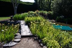 Water Irises (Jocey K) Tags: newzealand bankspeninsula southisland motukarara irisgarden waterlilies lilypond plants iris hedge sky watar pond bridge