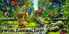ANIMAL DAY (carii_ID) Tags: carii cariicom binatang animal hari day komunitas community