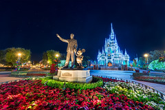Living the Dream (TheTimeTheSpace) Tags: night stars disney mickey disneyworld waltdisneyworld hdr magickingdom partners waltdisney cinderellacastle dreamlights focusstacking nikond810