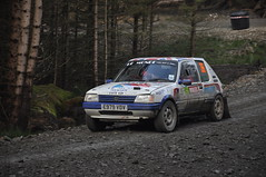 Wales Rally GB 2014 - No. 266 Deeley/Proudman (Trev Bashford) Tags: fish wales bar rally le gb monde peugeot 205 2014 deeley proudman aberhirnant