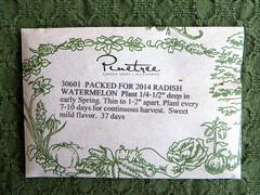 Watermelon Radish Seeds (genesee_metcalfs) Tags: garden vegetable seeds radish