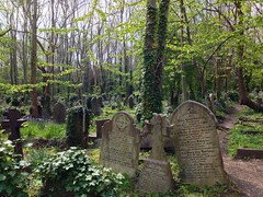 Highgate Cemetery (Terekhova) Tags: overgrown graves funeral catacombs tombstones tombs photostream