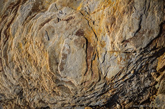 Textura foliada (SantiMB.Photos) Tags: espaa rock stone geotagged slate esp roca piedra pizarra cataluna cantallops 2tumblr sal18250 2blogger geo:lat=4243186100 geo:lon=292582989