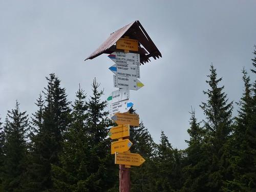 Węzeł szlaków na Polanie (1067 m)