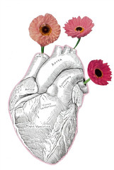 Heart and Flowers (dadadreams (Michelle Lanter)) Tags: collage collageart flowerart floralart humanheart anatomicalheart heartanatomy heartandflowers anatomicheart