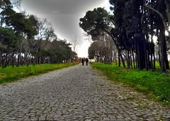 Love Walk (Bkutlak H.D) Tags: life people love photo long walk