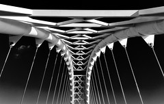 011115 - 278/365 (Dan Fleury Photos) Tags: bridge sky blackandwhite bw cloud white toronto black canon wire pod suspension steel symmetry project365 p365 pedestrial humberbaybridge cans2s
